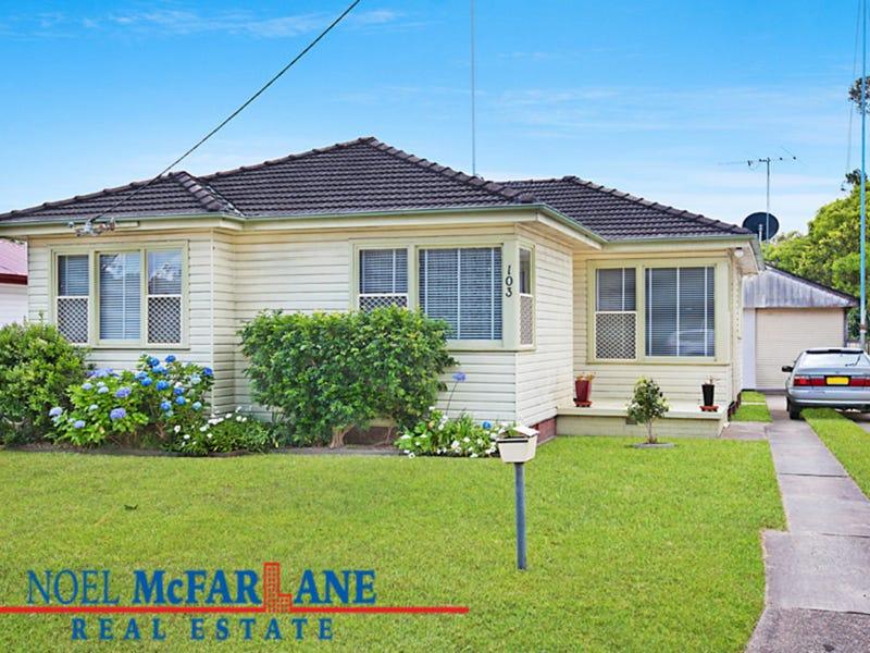 103 Hillsborough Road, Hillsborough, NSW 2290