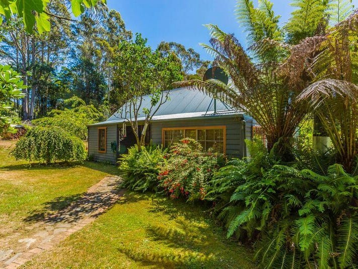 20 Mount Paris Dam Road, Weldborough, Tas 7264