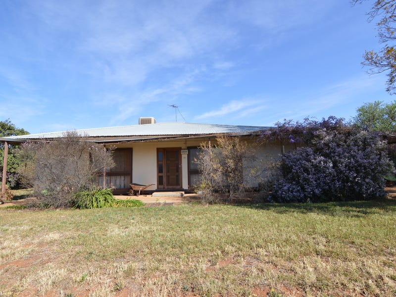 59 Jacaranda Road, Coomealla, NSW 2717