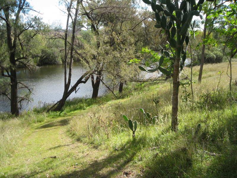 Pindari Dam Road, Ashford, NSW 2361