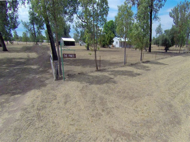 543 Old Gunnedah Road, Narrabri, NSW 2390