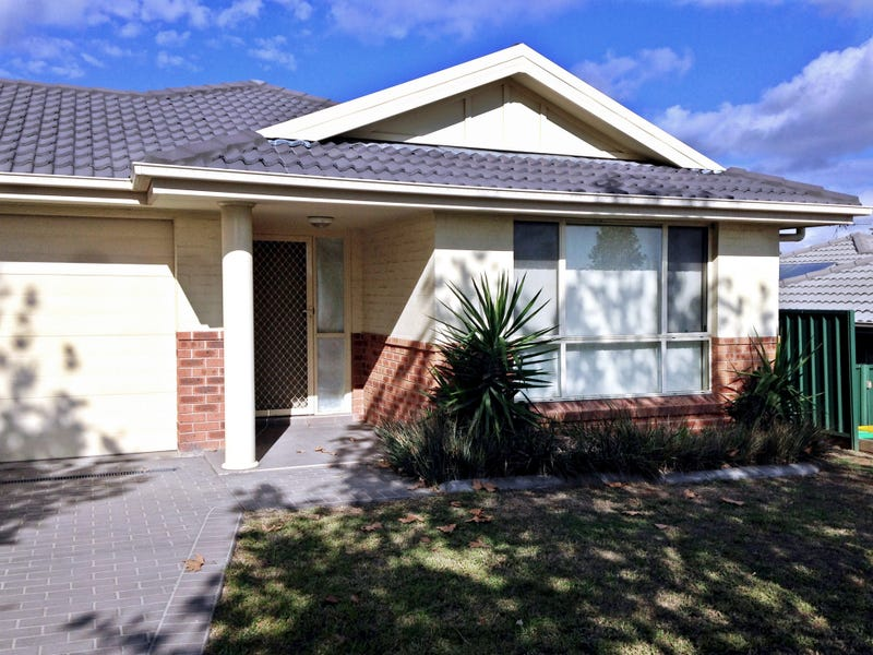 9 Henry Dangar Drive, Muswellbrook, NSW 2333