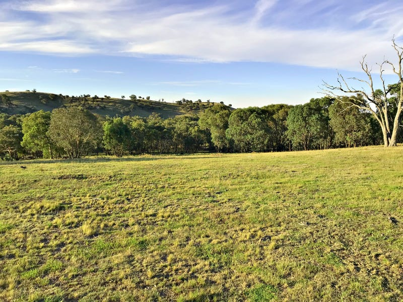 170 Mantons road, Gundagai, NSW 2722