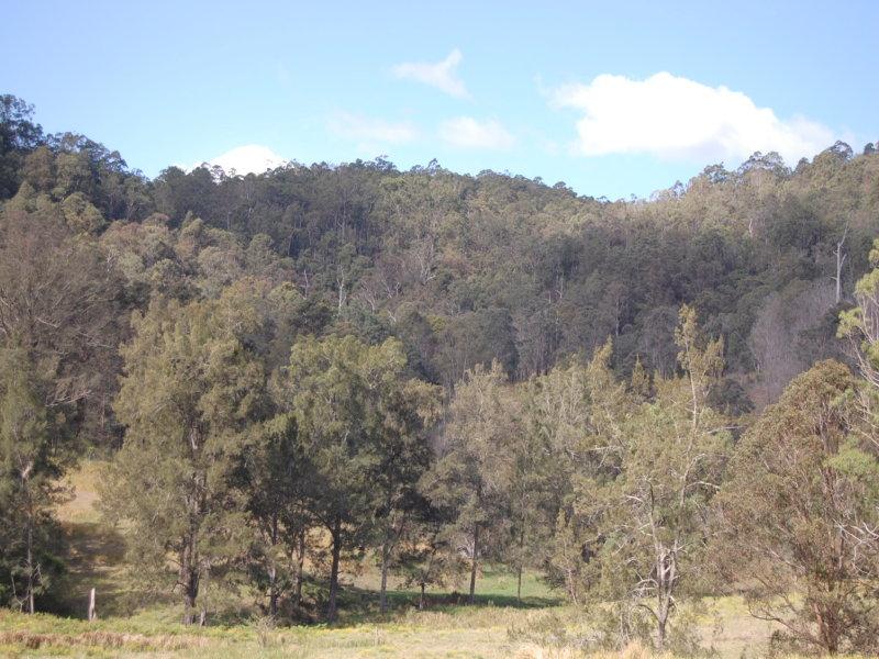 Lot 2 'La Trobe Park' Duck Creek Road, Old Bonalbo, NSW 2469