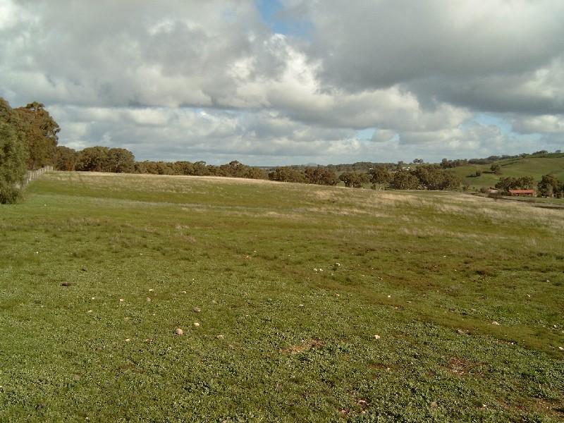 Lot , 6 Donkey Gully Road, Campbells Creek, Vic 3451