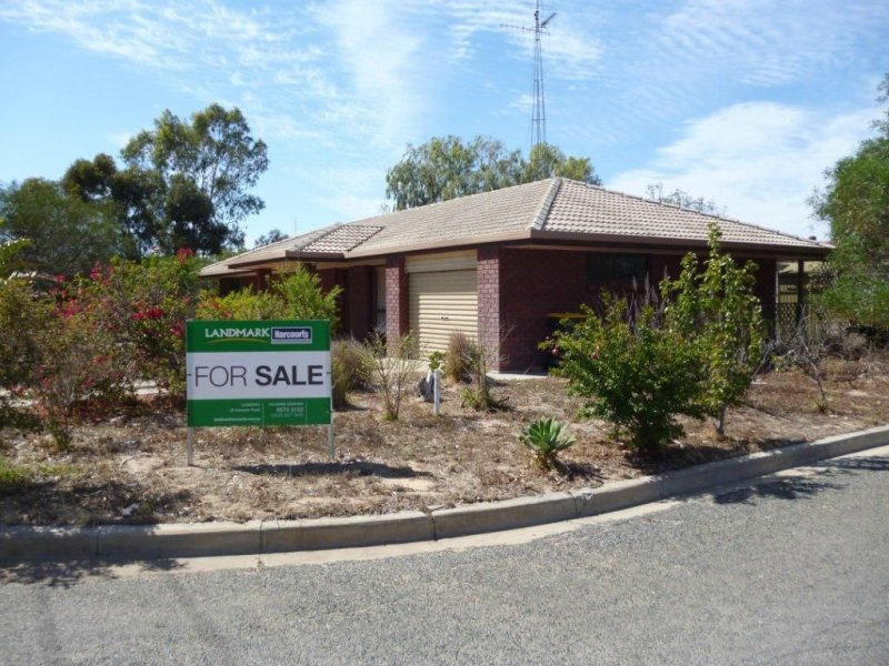 12 Needs Road, Lameroo, SA 5302