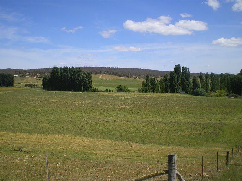 577 Warrens Corner Road, Numeralla, NSW 2630