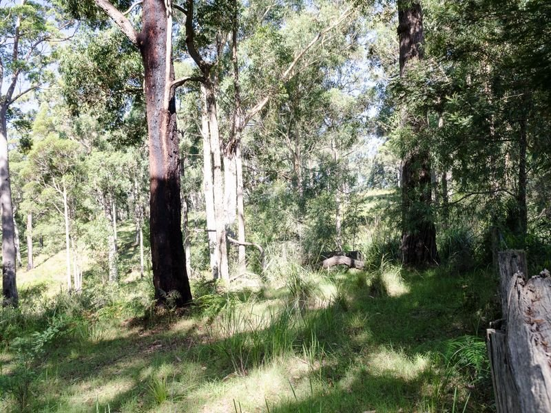 Lot 1 Old Mill Road, Turlinjah, NSW 2537