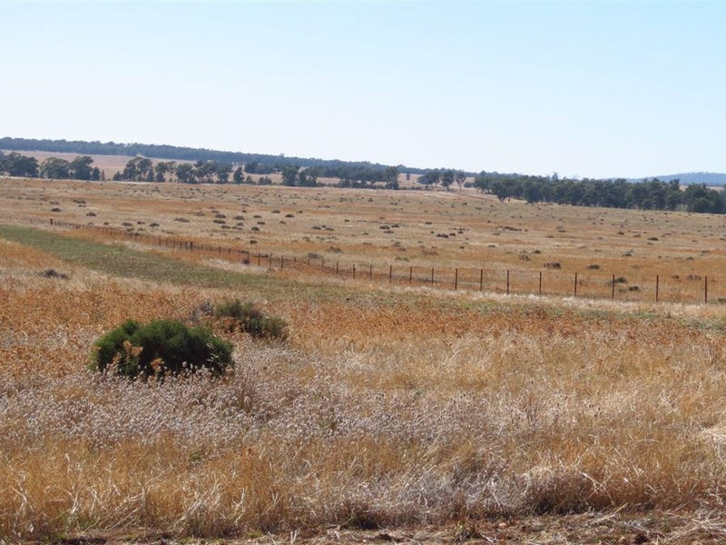 Talmore North Yalgogrin rd, West Wyalong, NSW 2671