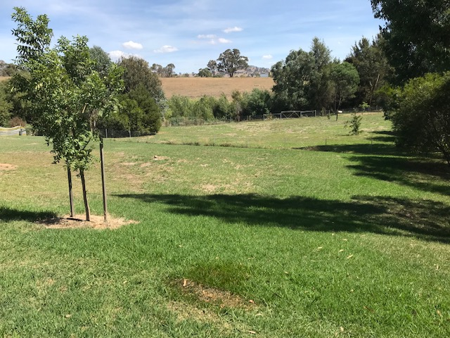 Lot 32 Cromwell Street, Adelong, NSW 2729