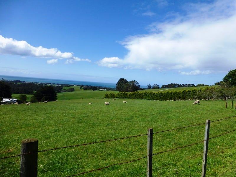 RA Old Mount Hicks Road, Mount Hicks, Tas 7325