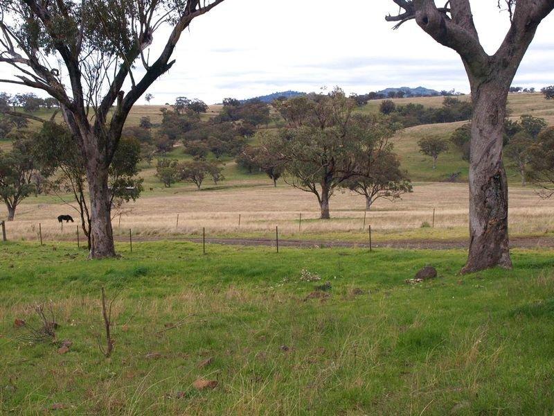 TARCOOLA, Willow Tree, NSW 2339
