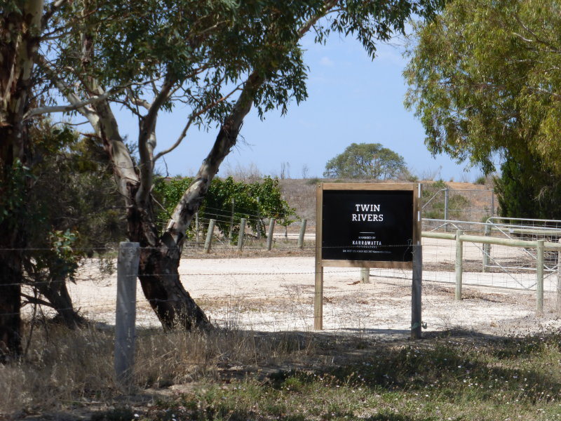 Twin Rivers Vineyard, Leslies  Road, Langhorne Creek, SA 5255