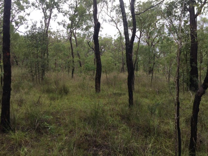 Lot 37 BALDAW RD, Captain Creek, Qld 4677