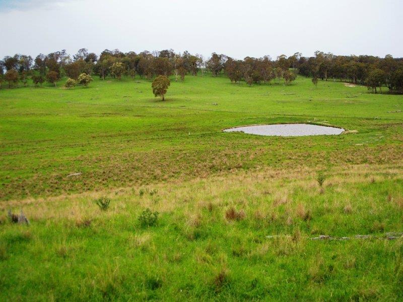 - Hillview Rd, Uralla, NSW 2358