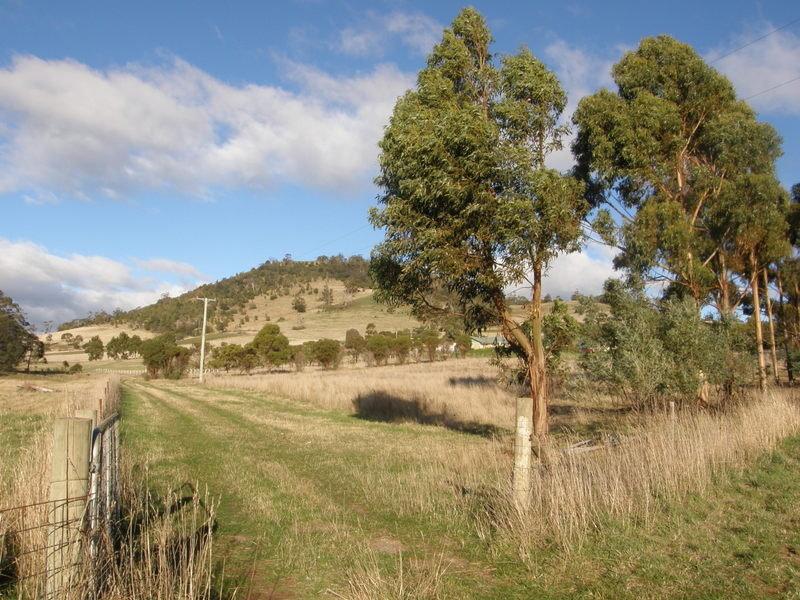 43 Logie Farm Road, Orielton, Tas 7172