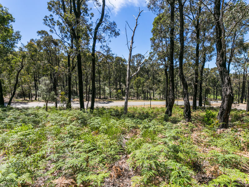 36 Narani Way, Fairhaven, Vic 3231
