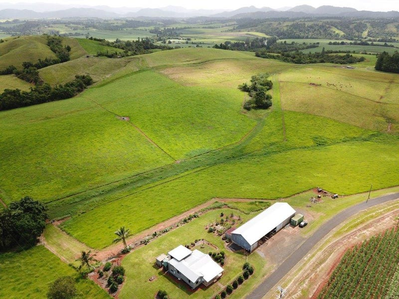307 No. 6 Branch Road, South Johnstone, Qld 4859
