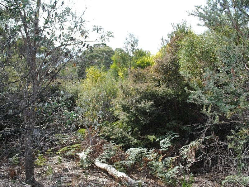 4 Hazards View Drive, Coles Bay, Tas 7215