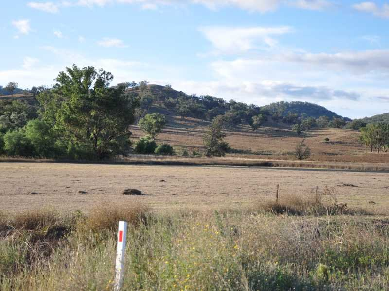 Lot 15 Martins Lane, Piallamore, NSW 2340
