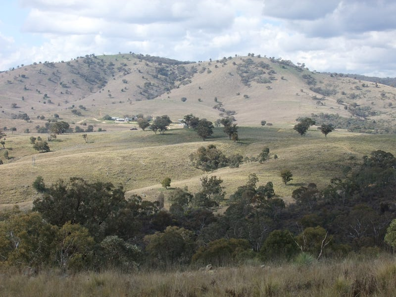 1931 The Bridle Track, Bruinbun, NSW 2795