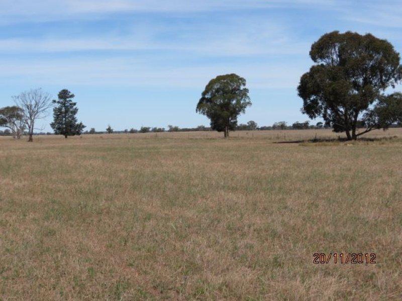 . 'Speedwell', West Wyalong, NSW 2671