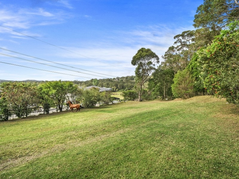 113 Orchard Street, Warriewood, NSW 2102