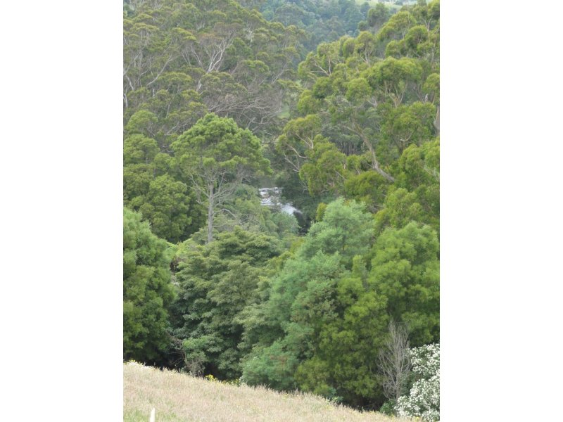 580 Woomera Creek Rd, Toora, Vic 3962