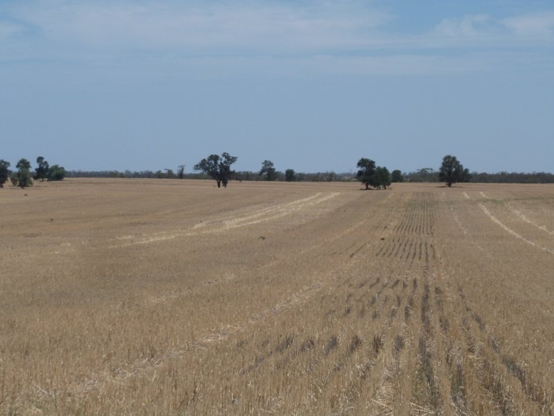 0 Weimby-Kyalite Road, Kyalite, NSW 2715