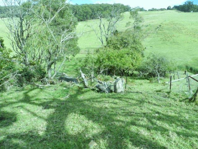 305 Whitelaws Track, Devon North, Vic 3971