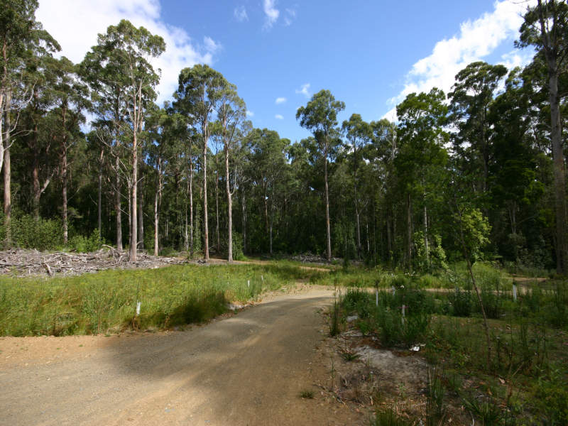Lot 1, Hastings Bay Esplanade, Hastings, Tas 7109