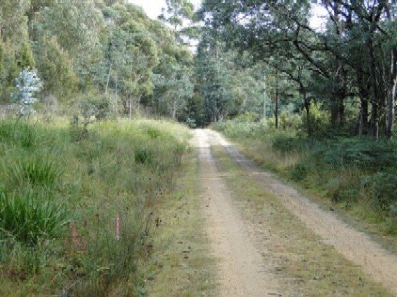 Lot 37064 Wilkins Road, Chain Of Lagoons, Tas 7215