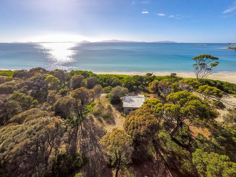 11766 Tasman Highway, Little Swanport, Tas 7190