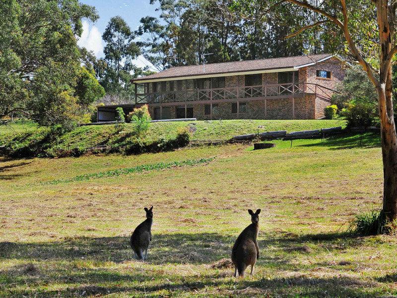 38 Lake Innes Drive, Lake Innes, NSW 2446
