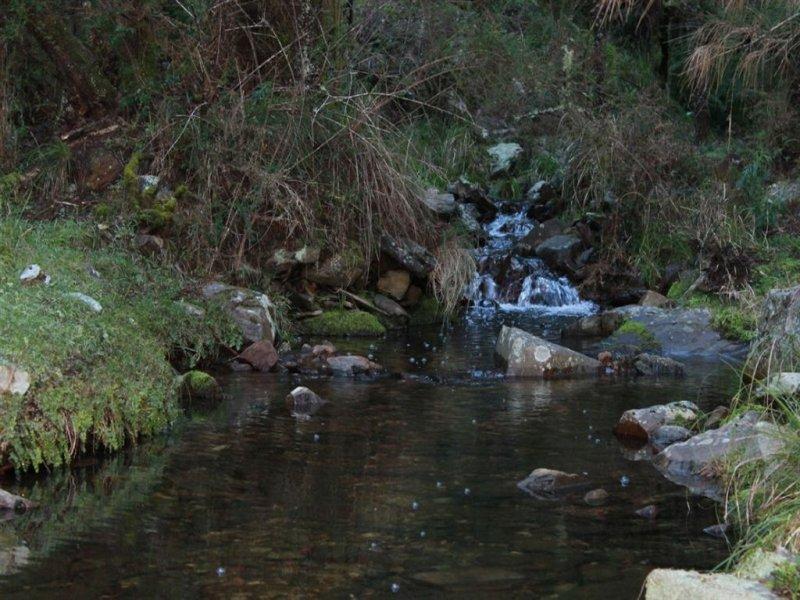 4864 Araluen Road, Araluen, NSW 2622