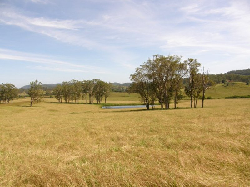 Lot 452 Armidale Road, Nymboida, NSW 2460