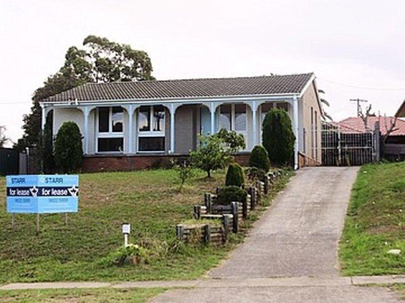 96 Heckenberg ave, Heckenberg, NSW 2168