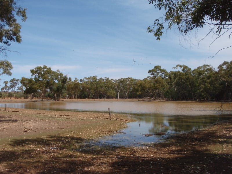 Cooneybar Road, Tindarey, NSW 2835