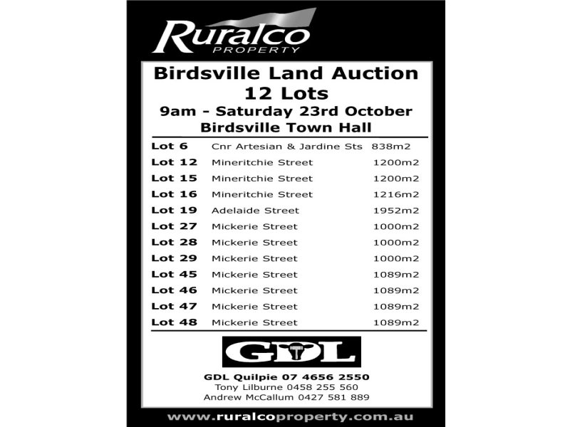 ' Diamantina Shire Council Auction', Birdsville, Qld 4482