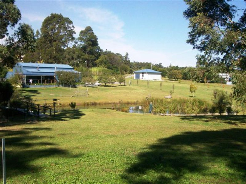 38 Hayward Road, Wandandian, NSW 2540