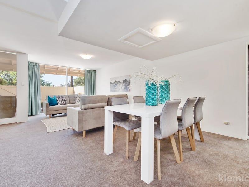 33 Ward Street, North Adelaide, SA 5006