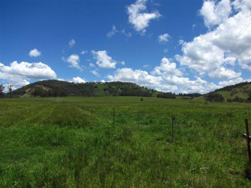 787 BOWMAN FARM, Bowman Farm, NSW 2422