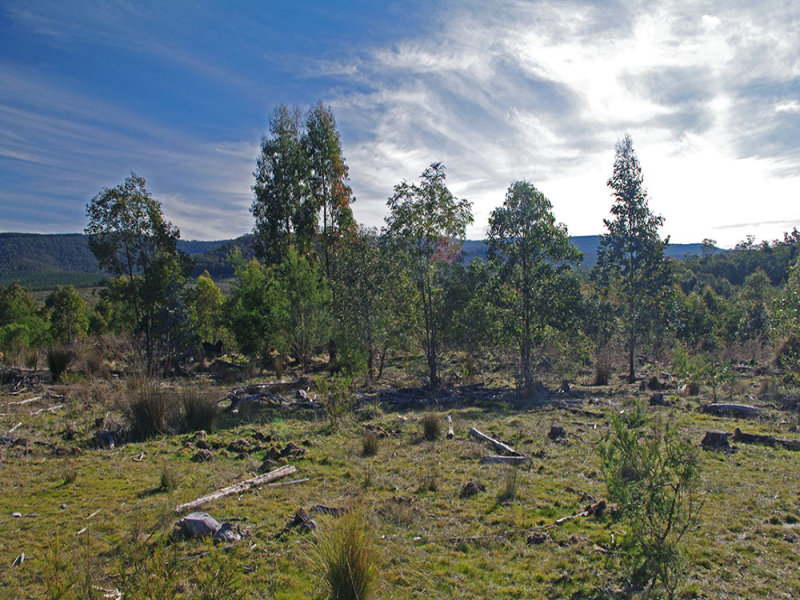 1580 Monaro Highway, Rockton, NSW 2632