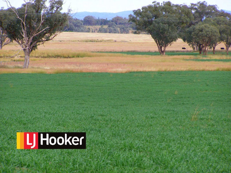 92 Petoria Park Road, Delungra, NSW 2403
