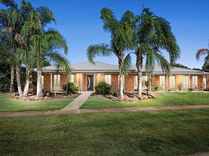 12 Forfar Drive, Moama, NSW 2731