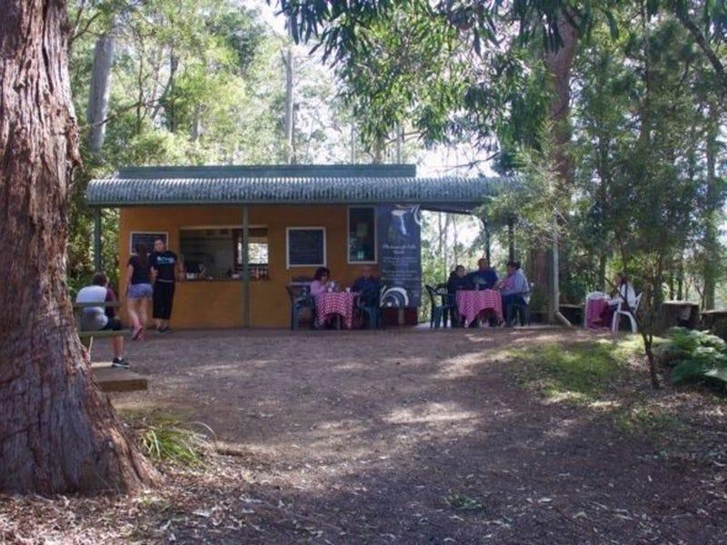 1 Ellenborough Falls Road, Elands, NSW 2429