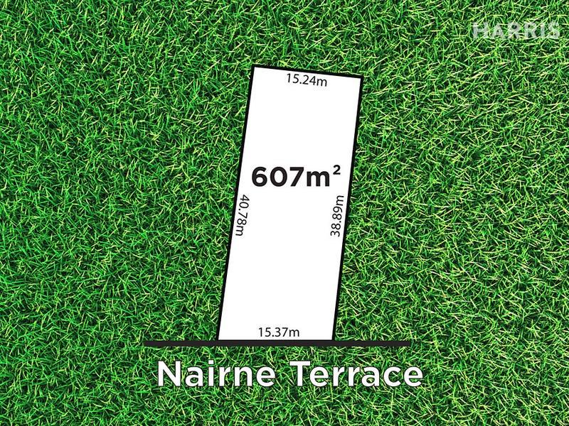 14 Nairne Terrace, Forestville, SA 5035