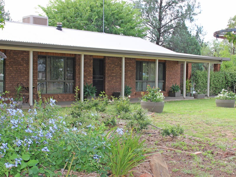 19 NAMOI, Baradine, NSW 2396