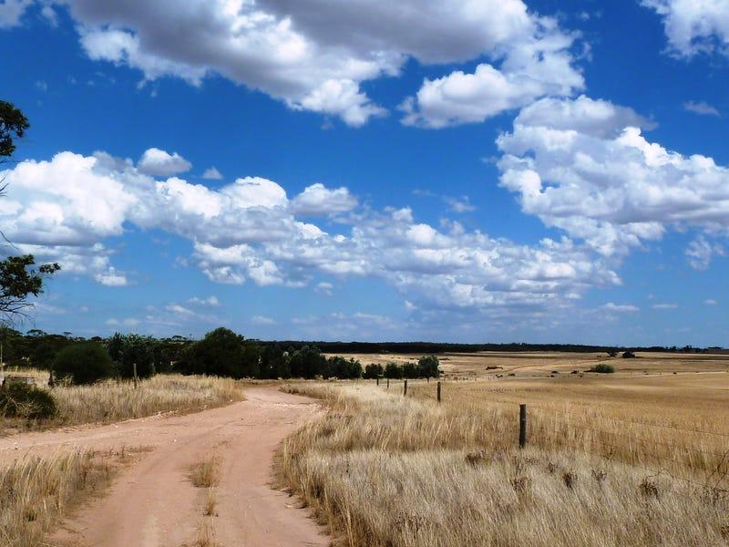 Weetbix's Bennie Road, Wirrulla, SA 5661