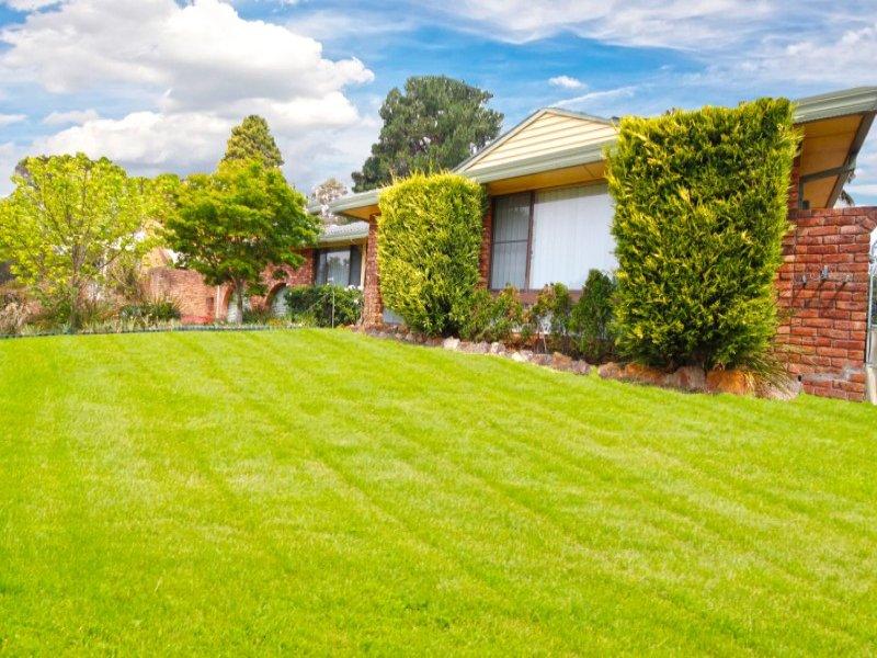 3 Pindari Street, Winmalee, NSW 2777